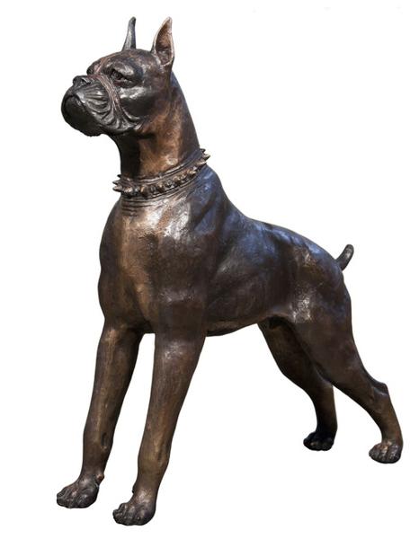 Bronze Boxer Dog Statue - AF 43909